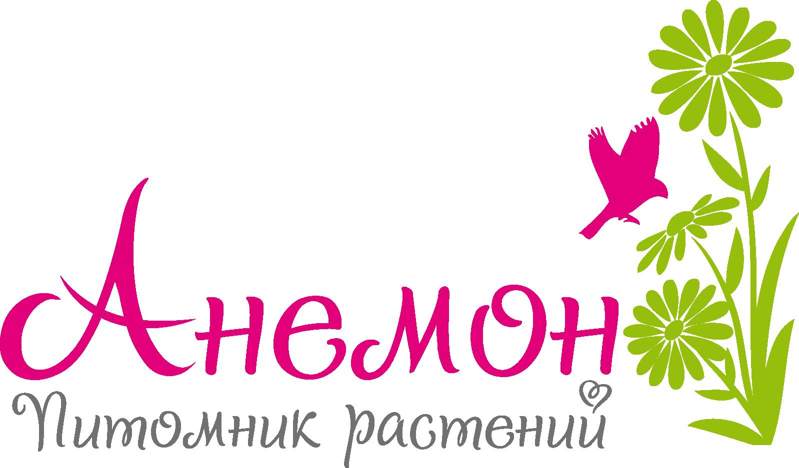 Саратовский питомник растений Анемон